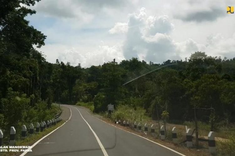 An image of Trans-Papua road.