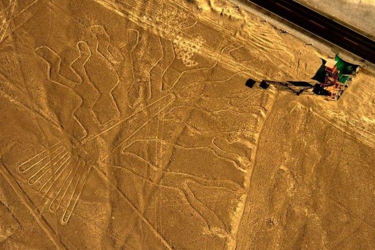 Salah-satu geoglyph lainnya adalah gambar yang disebut para ahli sebagai Pohon Guarango. Lokasinya sekitar 435 km di selatan ibu kota Peru, Lima.