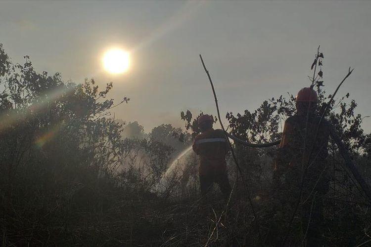 Menjelang magrib petugas Manggala Agni Daops Pekanbaru masih berjibaku memadamkan api kebakaran lahan di Kelurahan Air Hitam, Kecamatan Payung Sekaki, Pekanbaru, Riau, Jumat (19/7/2019).