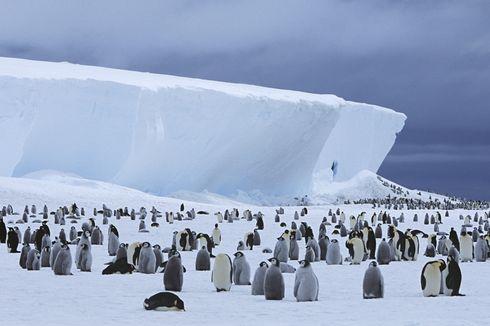 Terkuak, Ada Danau Baru Tersembunyi di Bawah Es Antartika