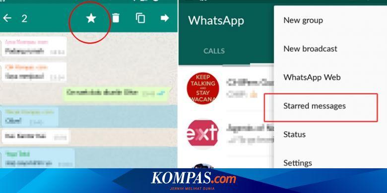 Diperbarui Whatsapp Punya Bintang Dan Intip Tautan