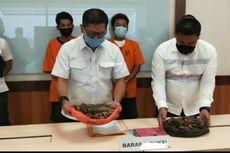 Jual 3,4 Kg Sisik Trenggiling Hasil Buruan, 2 Pelaku Ditangkap Polda Riau
