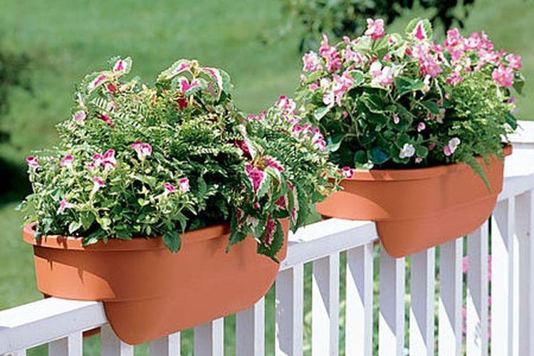 Pot di railing balkon hunian sebagai solusi taman tanpa lahan