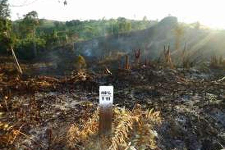 Hutan Lindung Pulau Nunukan yang sudah rusak parah. Diperkirakan lebih dari 1.300 kawasan hutan lindung rusak dari luasan 2.800 hektar. Akibat kerusakan tersebut warga mulai merasakan dampak kesulitan air bersih.