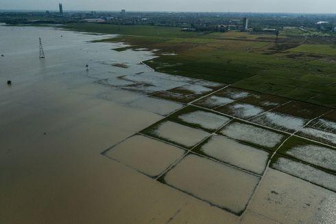 Ramalan Megawati: Indonesia Terancam Kelaparan