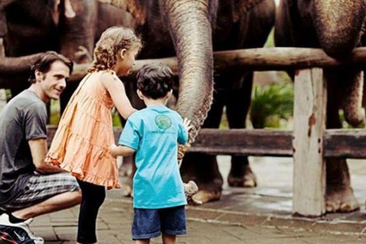 Bali Zoo atau Kebun Binatang Bali berlokasi di Desa Singapadu, Gianyar.