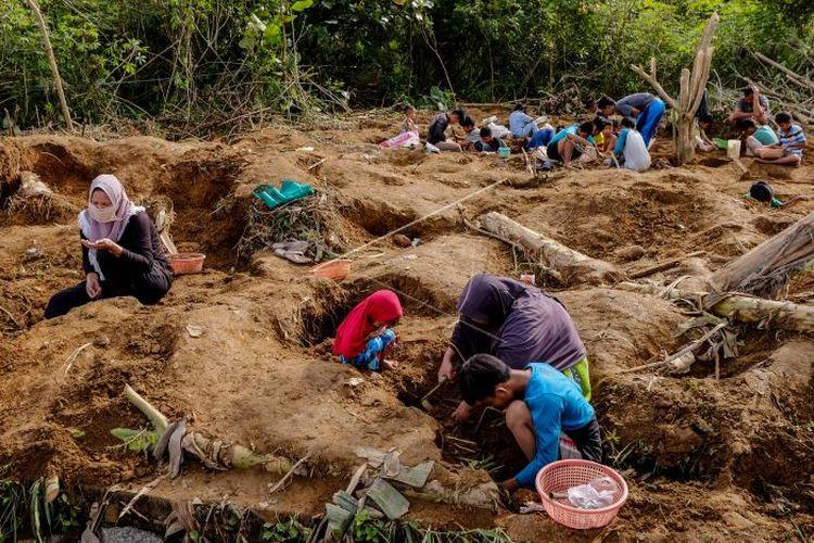 Warga Desa Ini Berburu Batu Rak, dalam 3 Hari Terkumpul 5 Ton, Dijual Rp 20.000 Per Kg