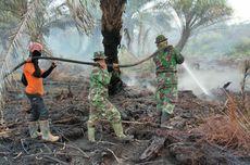 Karhutla Landa 532,59 Hektar, Polisi Tetapkan 139 Tersangka