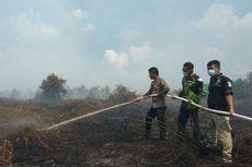 Kebakaran Hutan dan Lahan, Polisi Tetapkan Dua Tersangka