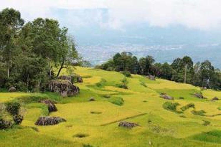 Panorama kota Rantepao di Kabupaten Toraja Utara, Sulawesi Selatan, memesona dengan udara yang sejuk. Pemandangan itu dapat dinikmati dari Batumonga yang terletak di lereng Gunung Sesean dengan ketinggian 1.300 meter di atas permukaan laut.