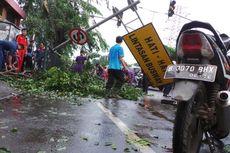 Hujan Angin Kurang dari 30 Menit, Pohon Bertumbangan