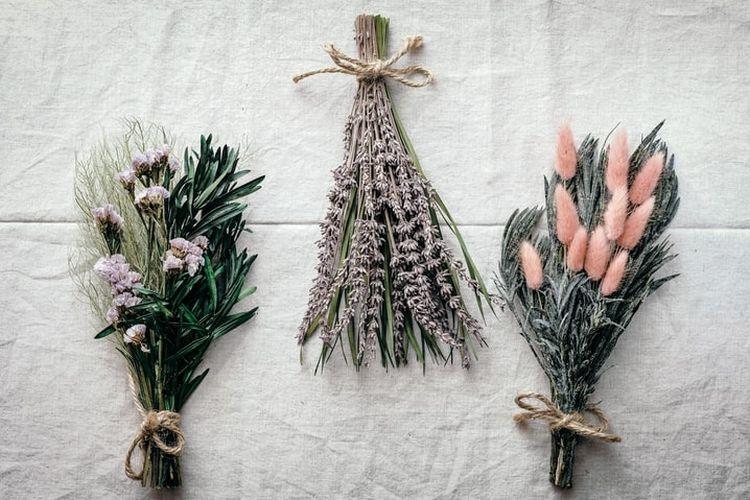 Ilustrasi bunga kering