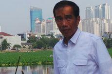 Jelang Musim Hujan, Jokowi Tanam 10.000 Pohon Mangga