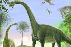99 Jejak Kaki Dinosaurus Sauropoda Ditemukan di Batu Pasir Tibet