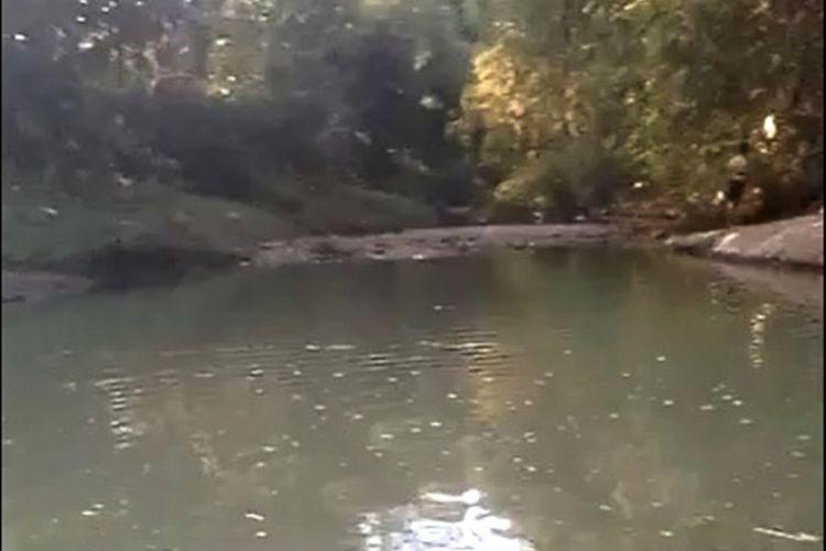 Ribuan ikan di Sungai Indon Desa Tladan Kabupaten Magetan mati mendadak 2 hari terakhir. Matinya ribuan ikan dan kondisi sungai yang keruh serta bau diduga diakibatkan pencemaran sungai dari pabrik tahu.