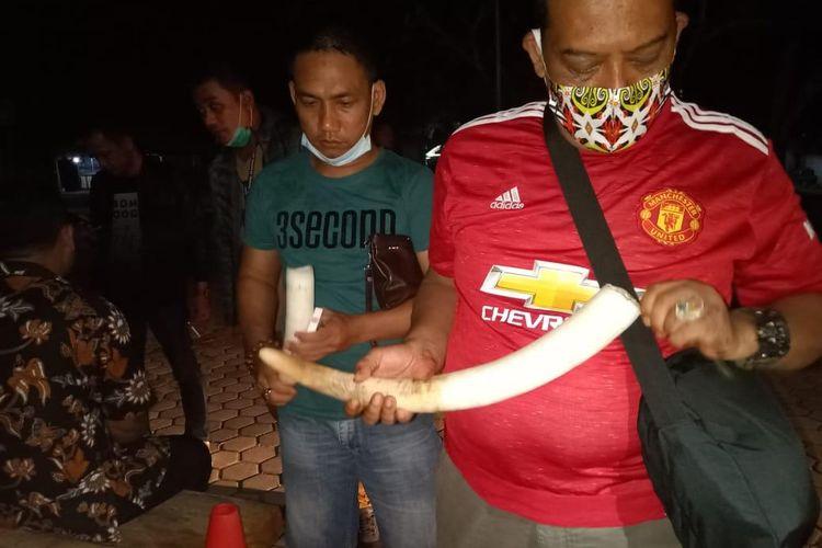 Pengungkapan perdagangan gelap gading gajah. (FOTO: Dok. Humas Polda Lampung)