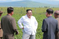 Kim Jong Un Ingin Paus Fransiskus Berkunjung Ke Korut