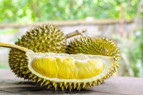 Tim Universitas Brawijaya Olah Kulit Durian Jadi Krim Obat Jerawat