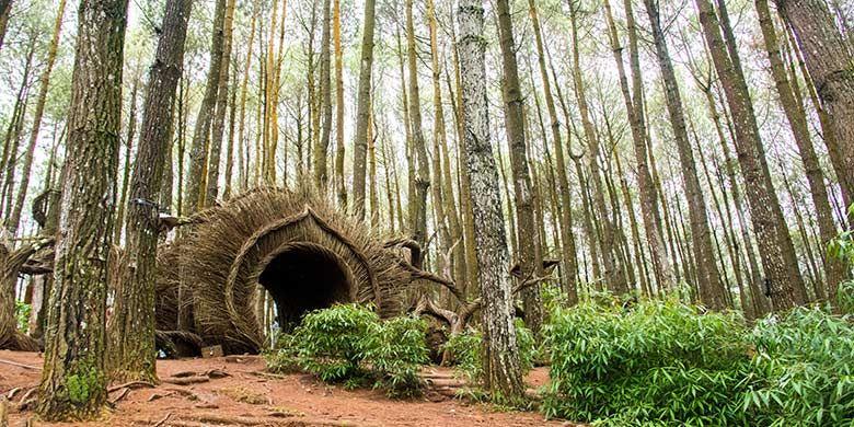 Salah satu ornamen untuk spot foto di Hutan Pinus Pengger, Yogyakarta.