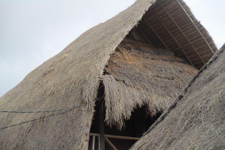 atap rumah Desa Sade