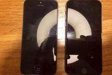 iPhone 5SE Punya Varian Warna Pink?