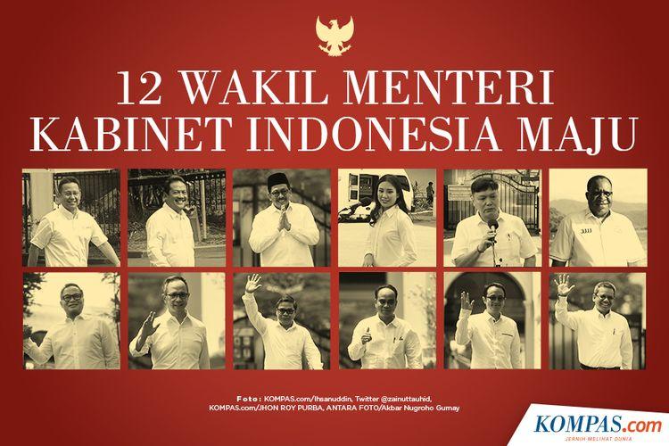 12 Wakil Menteri Kabinet Indonesia Maju