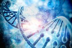 Asal-usul Ariel NOAH hingga Najwa Shihab Berdasarkan DNA, dari Manakah?
