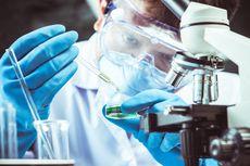 4 Negara Eropa Bentuk Aliansi Produksi Vaksin Virus Corona