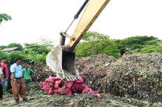 Bea Cukai Bakar 70 Ton Bawang Merah Asal Thailand dan Malaysia
