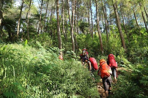 Gunung Ciremai Dibuka Hanya untuk Trekking, Apa Bedanya dengan Pendakian?