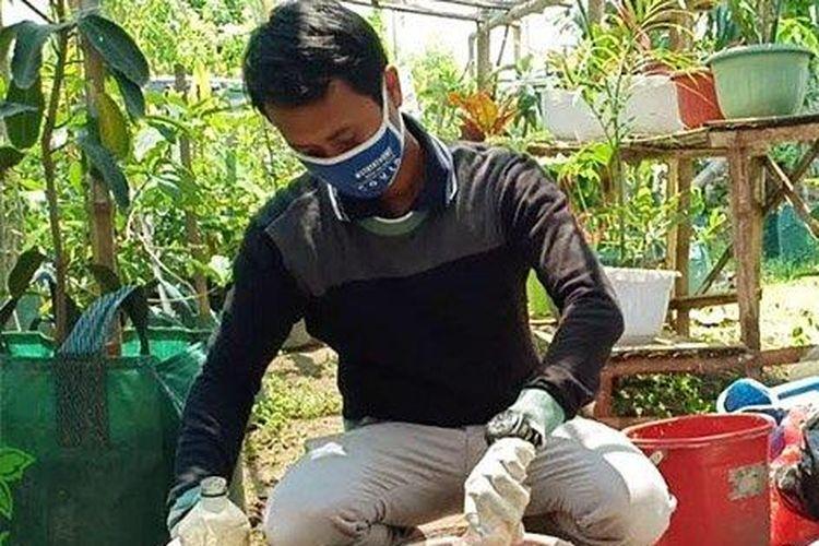 Irwan Budianto menggunakan diaper bekas pakai sebagai media tanam.