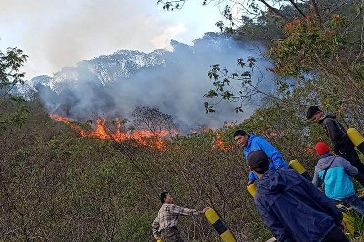 Kebakaran hutan Cagar Alam Papandayan, Minggu (6/10/2019)