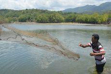 Cara Nelayan Mencari Ikan Supaya Kelestarian Ekosistem Terjaga