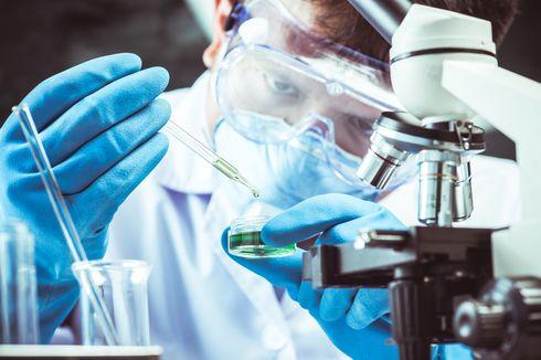 Vaksin Corona Bisa Dibuat Lebih Cepat dari Normal, Kok Bisa?