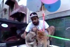 Terbangkan Anjing dengan Balon, Youtuber Ini Ditangkap