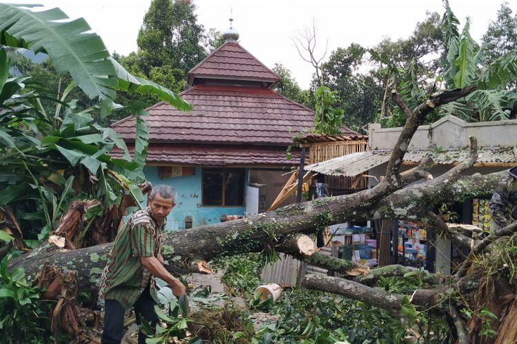 Seorang warga membersihkan pohon tumbang terdampak bencana angin puting beliung di Desa Lembursawah, Cicantayan, Sukabumi,Jawa Barat, Jumat (22/2/2019).