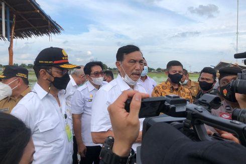 Impor Alkes Naik 5 Kali Lipat, Luhut Dorong Belanja Produk Dalam Negeri Ditingkatkan