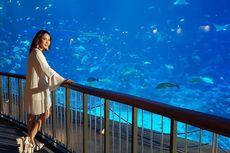 Destinasi Sempurna bagi BCL, Resorts World Sentosa Singapore Cocok untuk Liburan Akhir Tahun