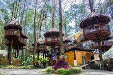 Kopeng Treetop Semarang Sementara Hanya Buka Saat Hari Libur