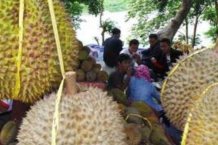 Lomba durian di Gunungpati, Semarang, Jawa Tengah, Sabtu (6/2/2016).