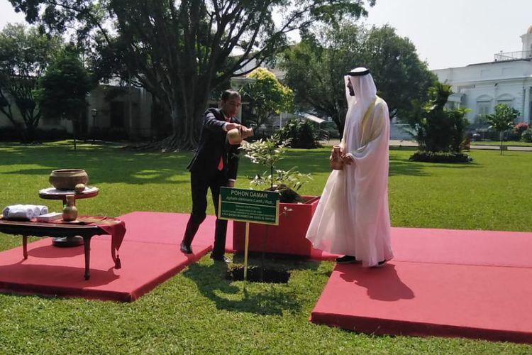 Presiden Joko Widodo mengajak Putra Mahkota Abu Dhabi, Sheikh Mohamed Bin Zayed Al Nahyan untuk menanam pohon di Istana Bogor, Rabu (24/7/2019).