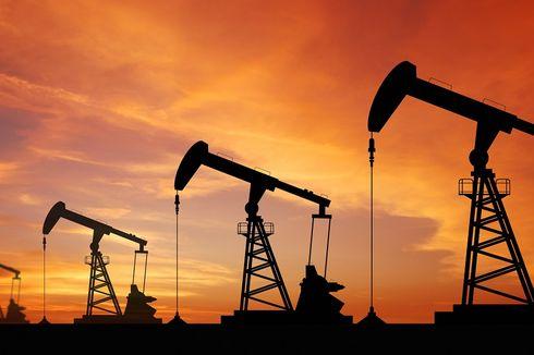 Pemerintah Dipandang Perlu Rilis Daftar Penerima Subsidi Harga Gas Industri