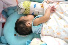 Kenapa Anak Kecil dan Hewan Tidur Lebih Lama? Ahli Temukan Jawabannya