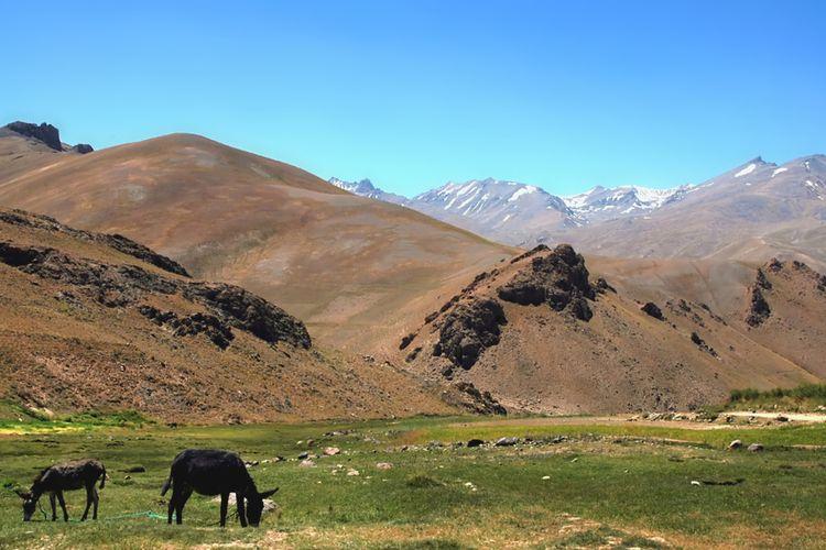 Pemandangan pegunungan antara Kabul dan Bamyan (Bamiyan) di Afghanistan.