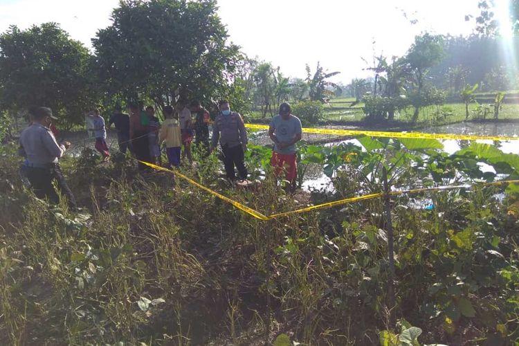 Yatmin (57) seorang petani asal Desa Watupawon, Kecamatan Penawangan, Kabupaten Grobogan, Jawa Tengah tewas tersengat jebakan tikus di sawah milik tetangganya, Kamis (8/4/2021).