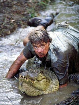 Steve Irwin menangkap buaya dalam film The Crocodile Hunter: Collision Course, pada 2002. (Courier Mail)