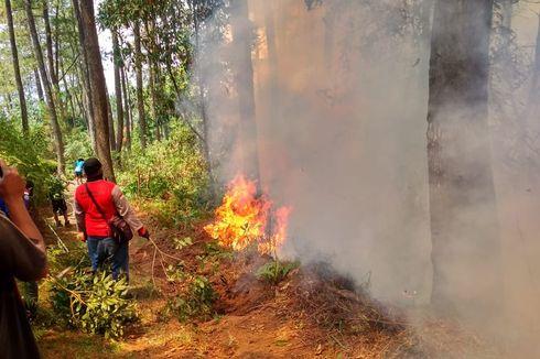 Warga Bakar Dupa, Areal Candi Gedongsongo Terbakar