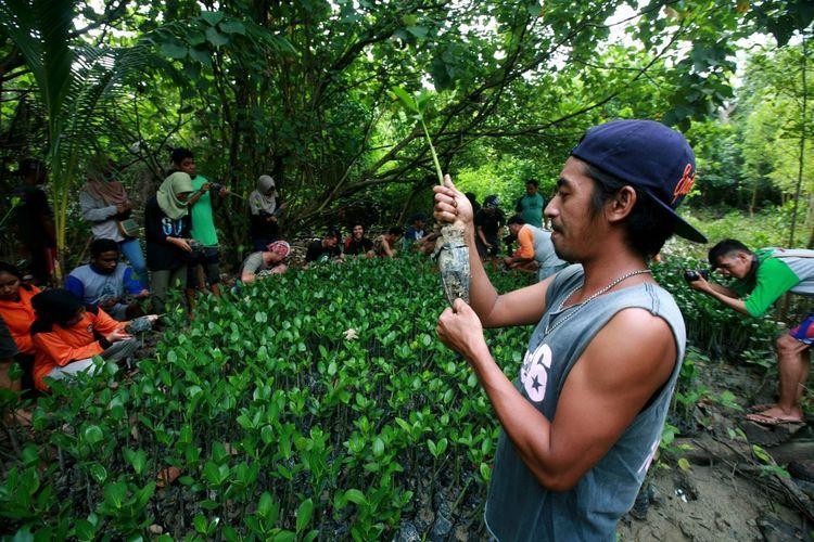Sejumlah pemuda mempersiapkan bibit mangrove sebelum dilakukan penanaman di Mempawah Mangrove Park, belum lama ini.