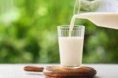 Benarkan Minum Susu Bantu Menjaga Kesehatan Tulang?