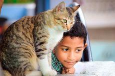 6 Perilaku Manusia yang Dibenci Kucing